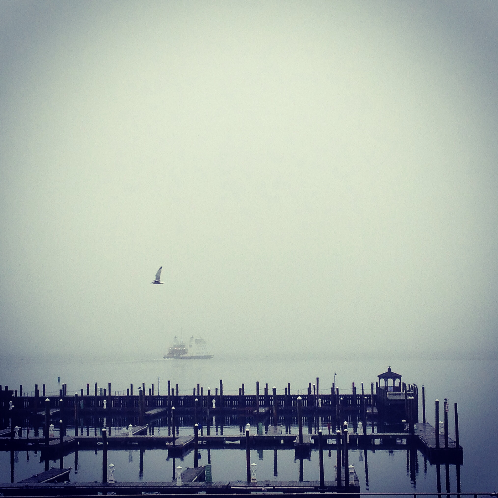 Fog in Port Jefferson Harbor - Danfords Hotel and Marina