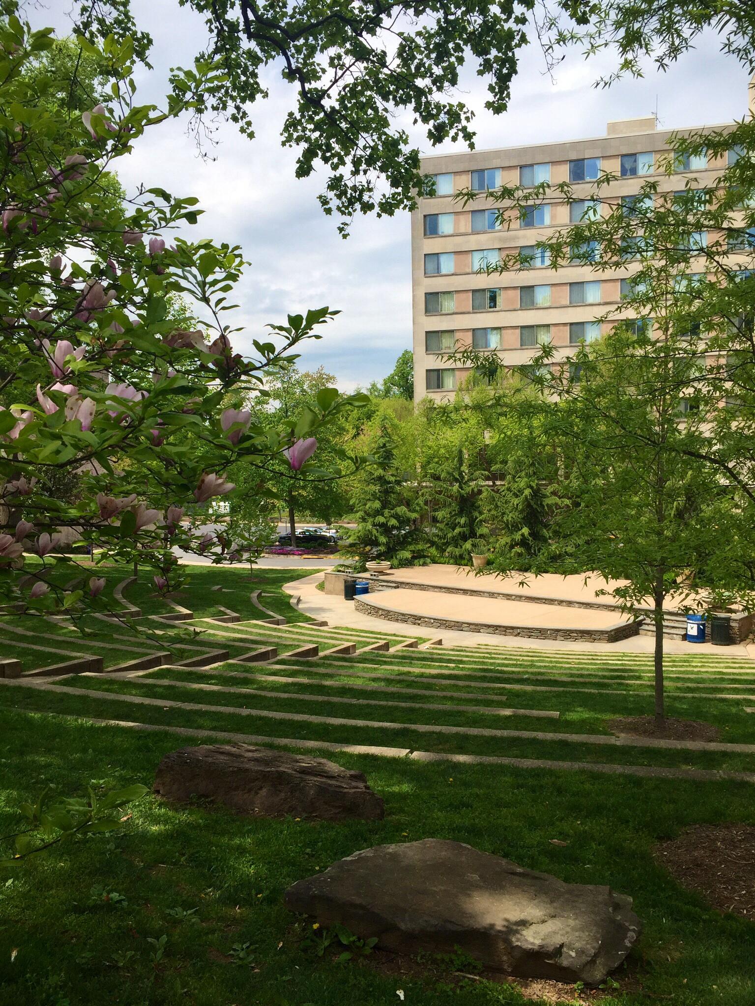 American University - Washington, D.C.