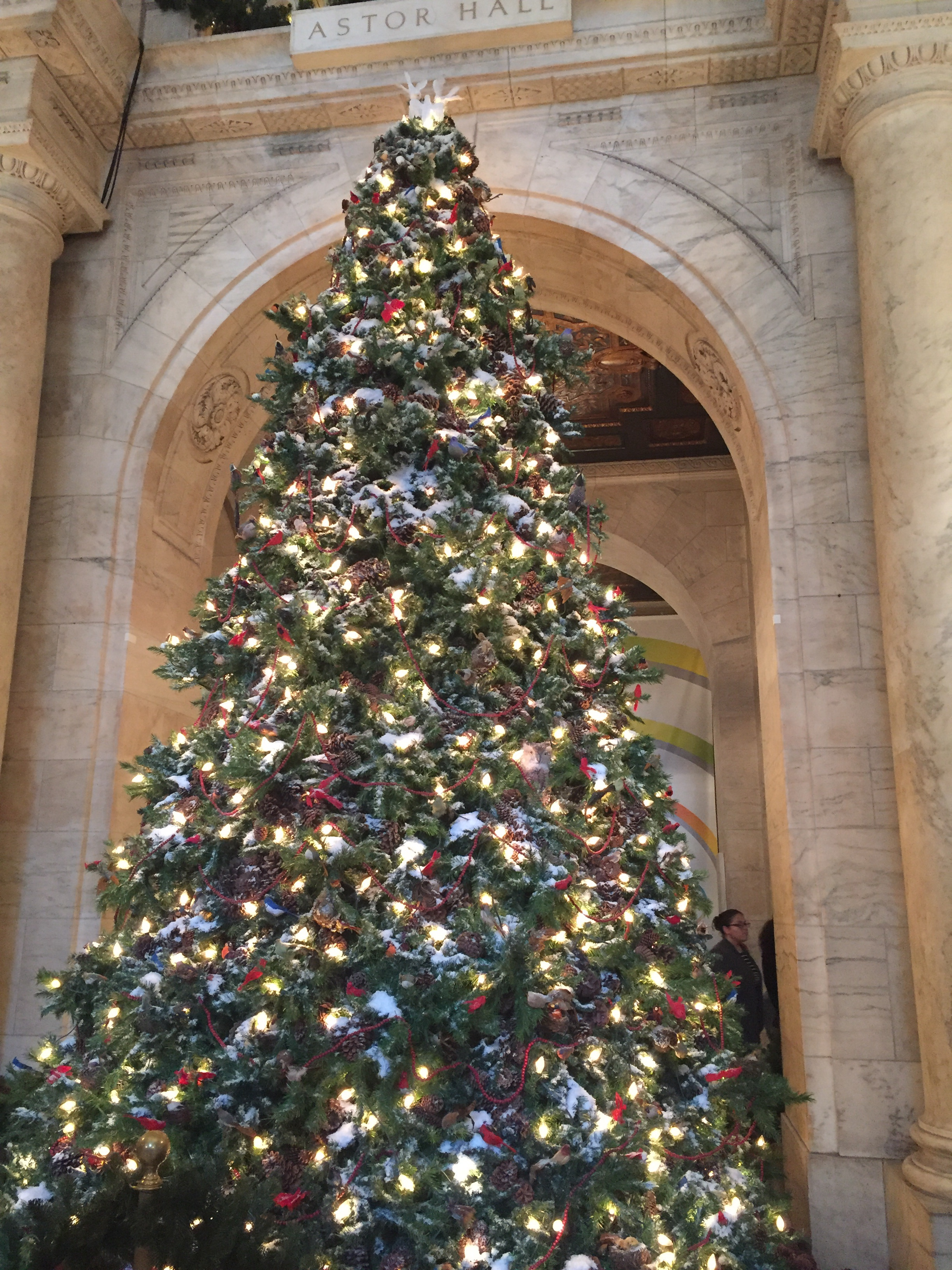 Tree at the New York Public Library