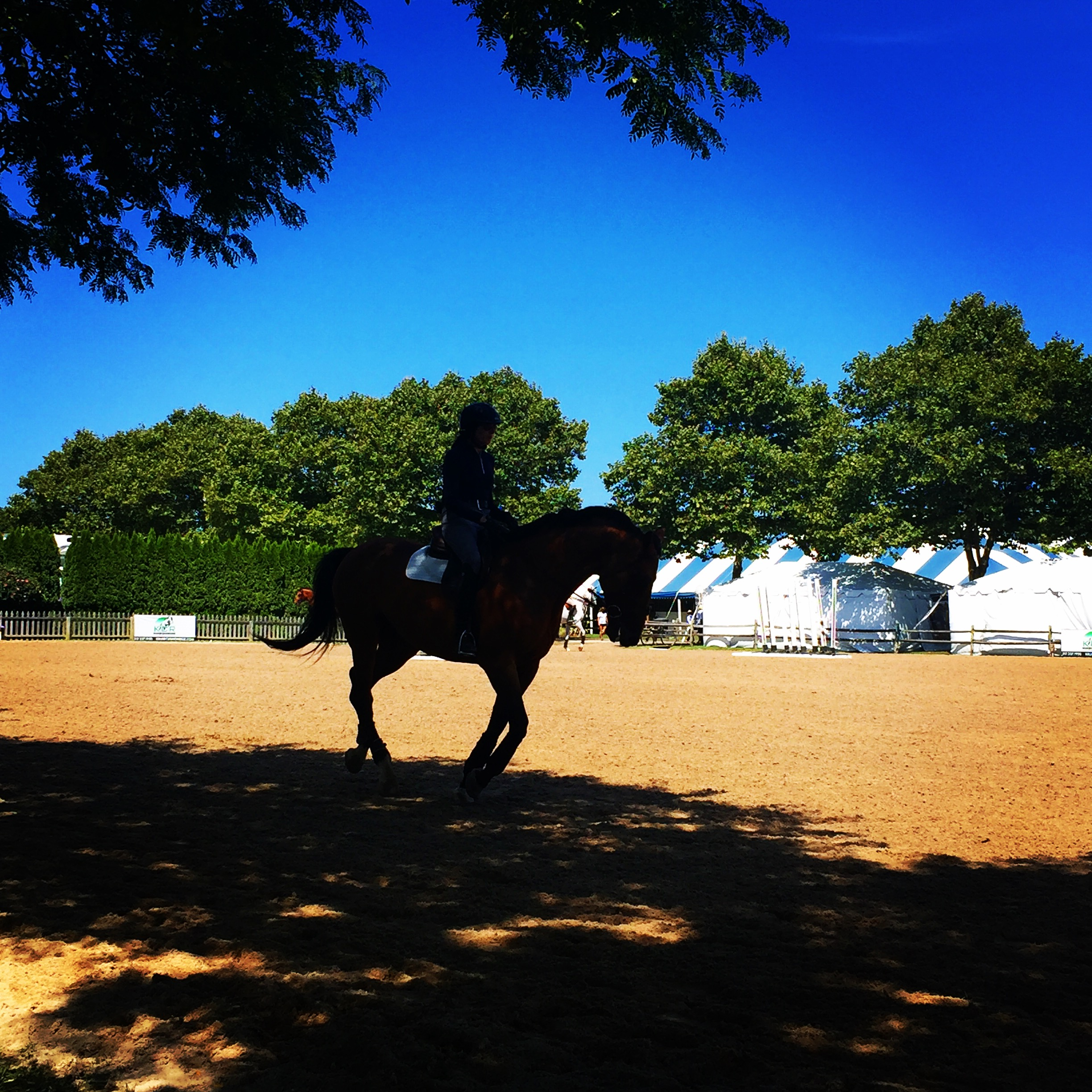 Opening Day at the Hampton Classic Horse Show
