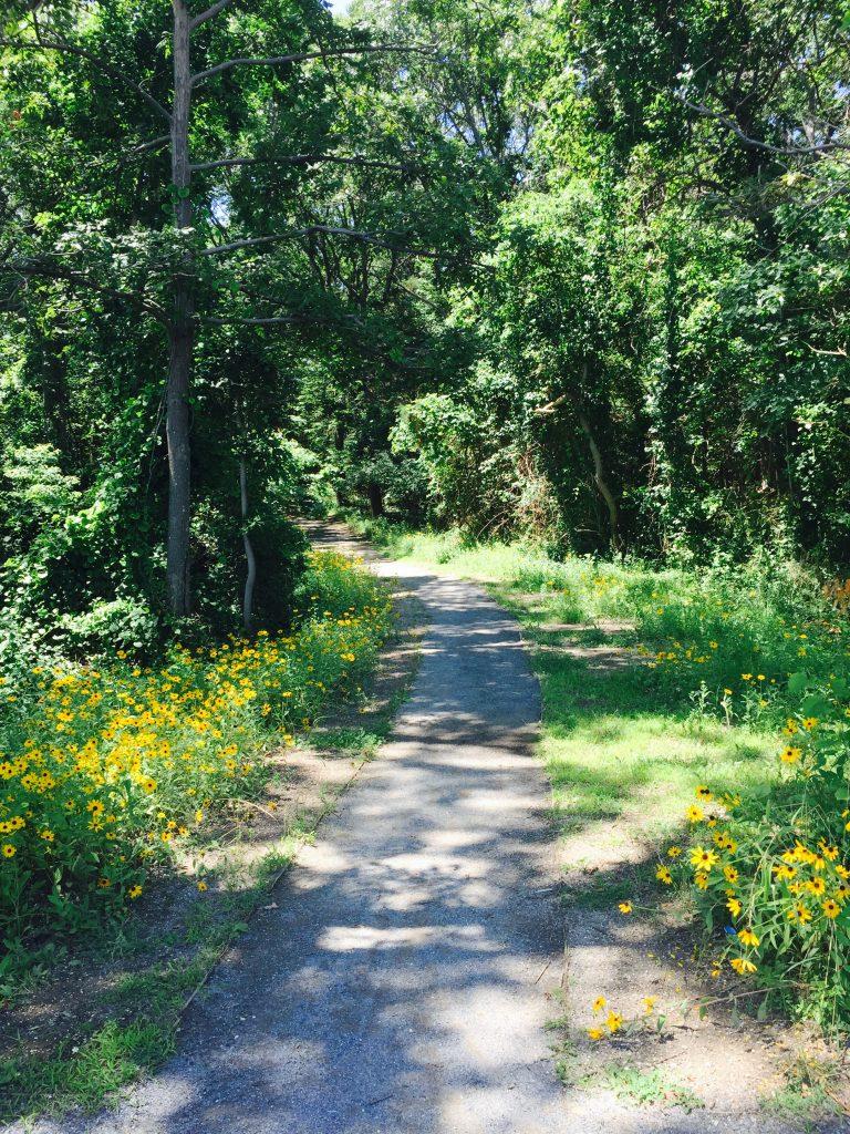 Target Rock National Wildlife Refuge 2