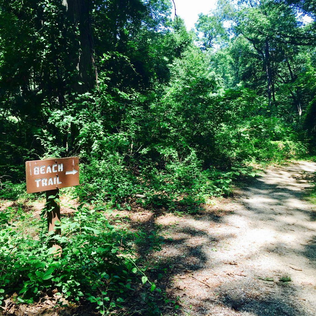 Target Rock National Wildlife Refuge 7