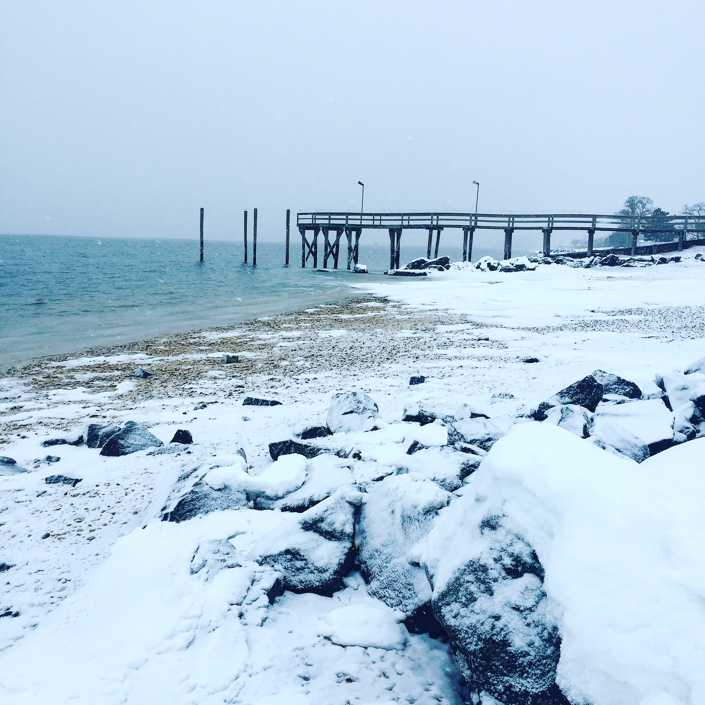 Snowy Beach Day