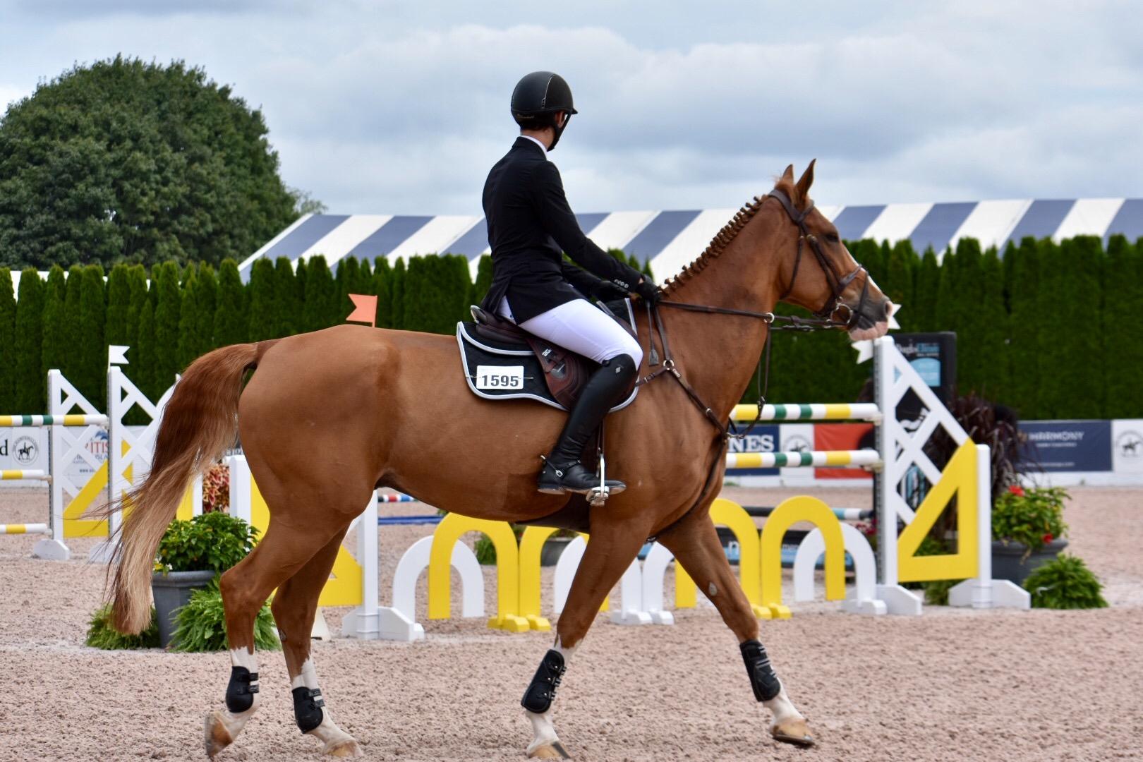 Hampton Classic Horse Show_1