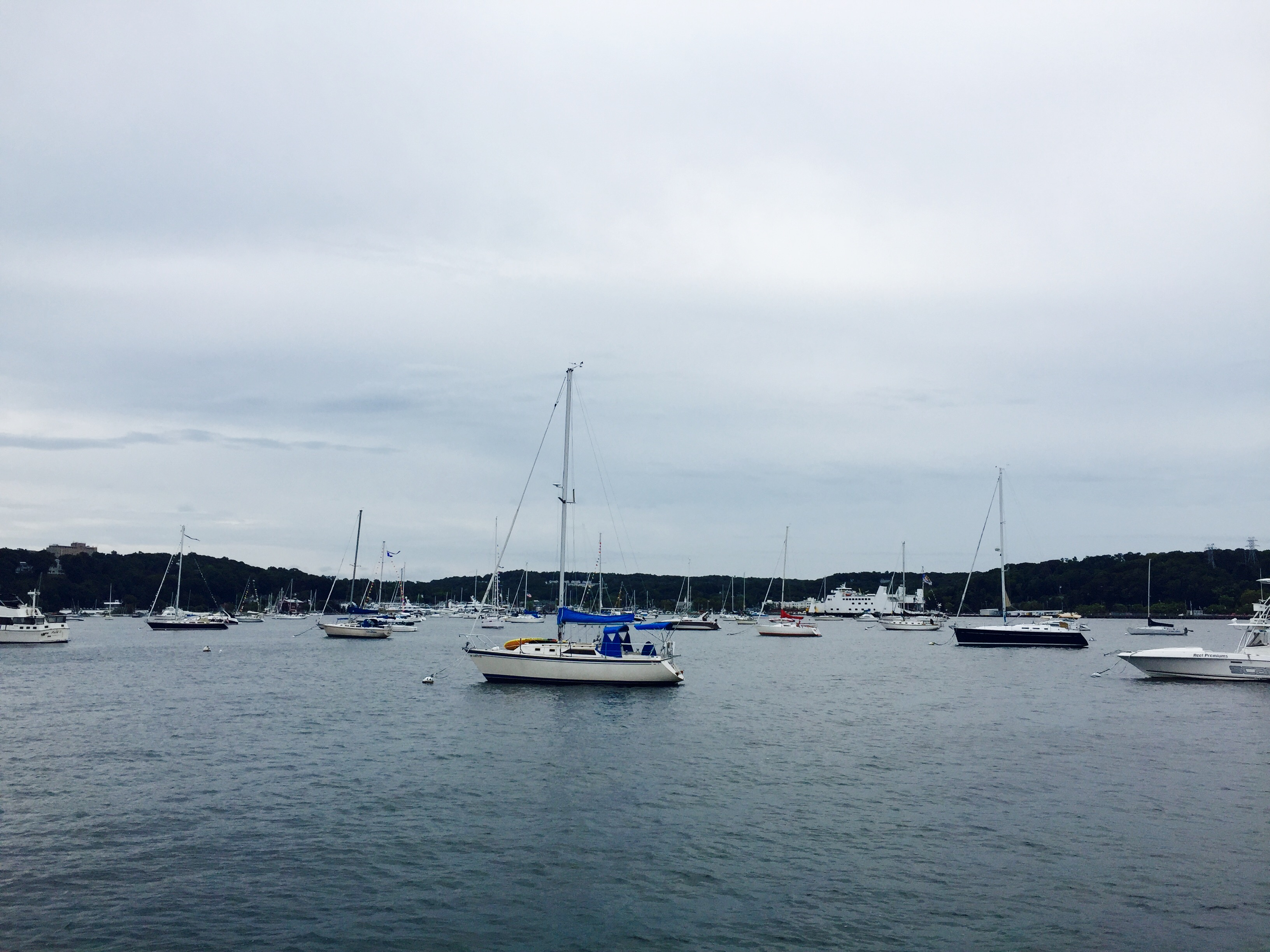 Port Jefferson Regatta_5