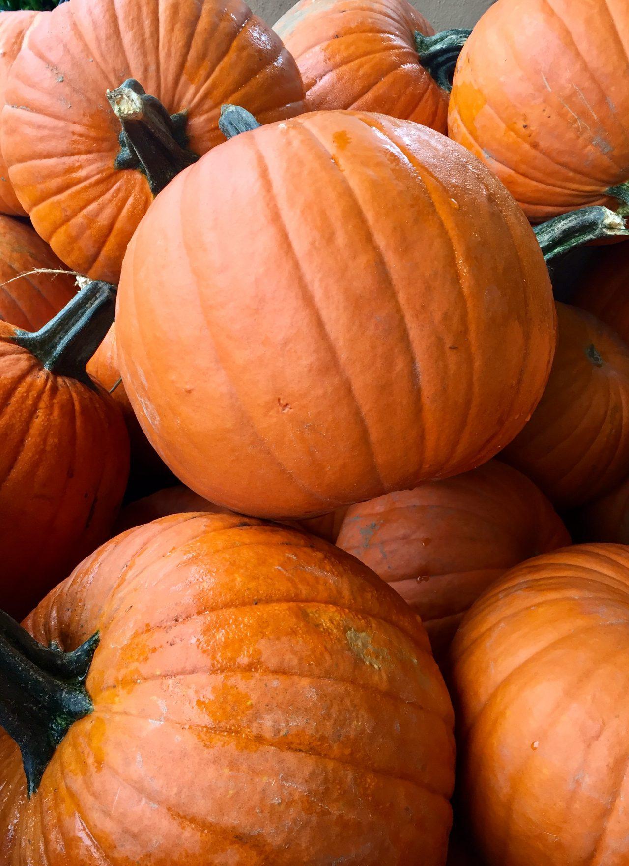 The October Agenda