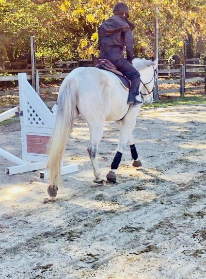 Riding in the Rain With Redingote Equestrian